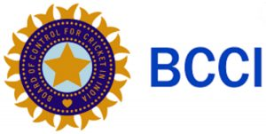 BCCI has formed a working group to look after domestic cricket. How many members are included in this group?